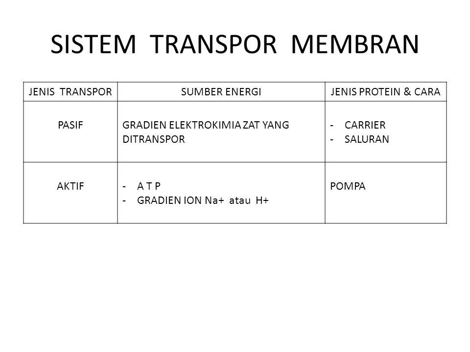 SISTEM TRANSPOR MEMBRAN JENIS TRANSPORSUMBER ENERGIJENIS PROTEIN & CARA PASIFGRADIEN ELEKTROKIMIA ZAT YANG DITRANSPOR -CARRIER -SALURAN AKTIF-A T P -G