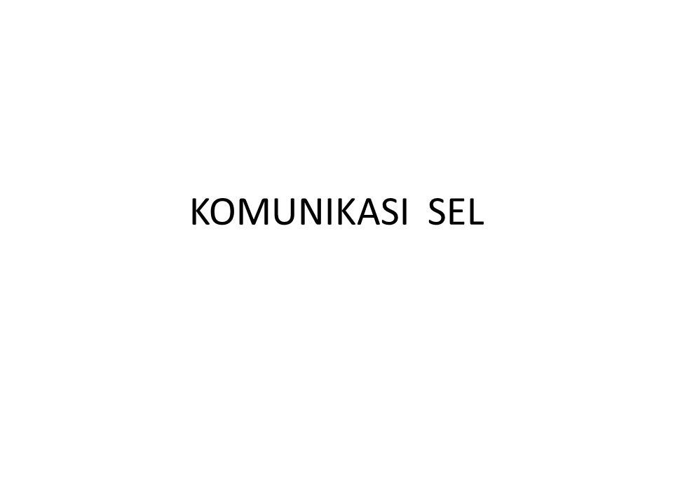KOMUNIKASI SEL