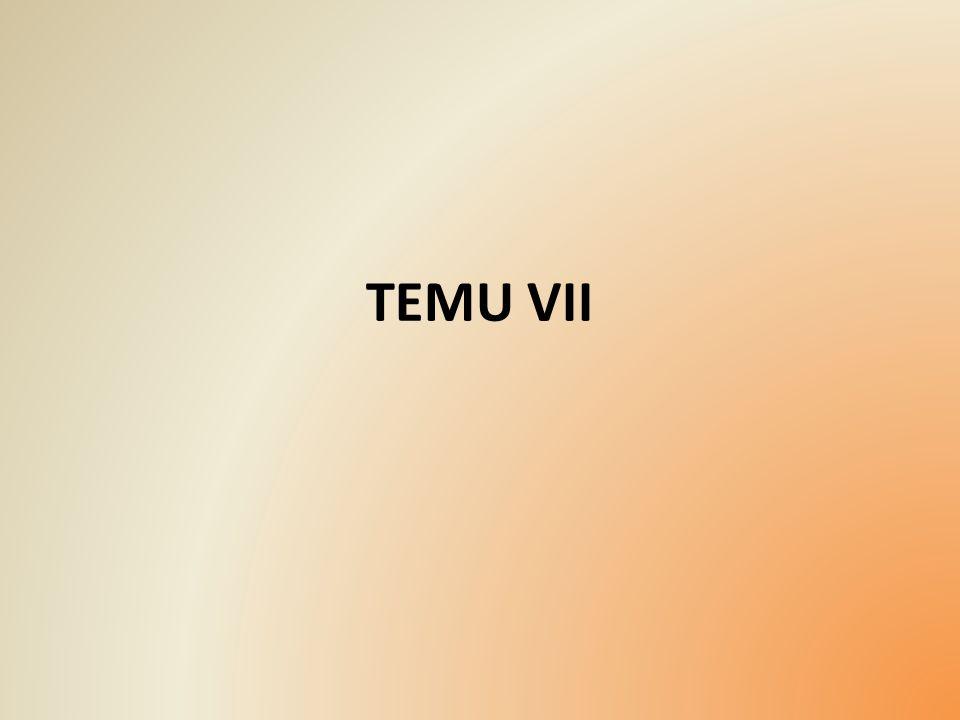 TEMU VII