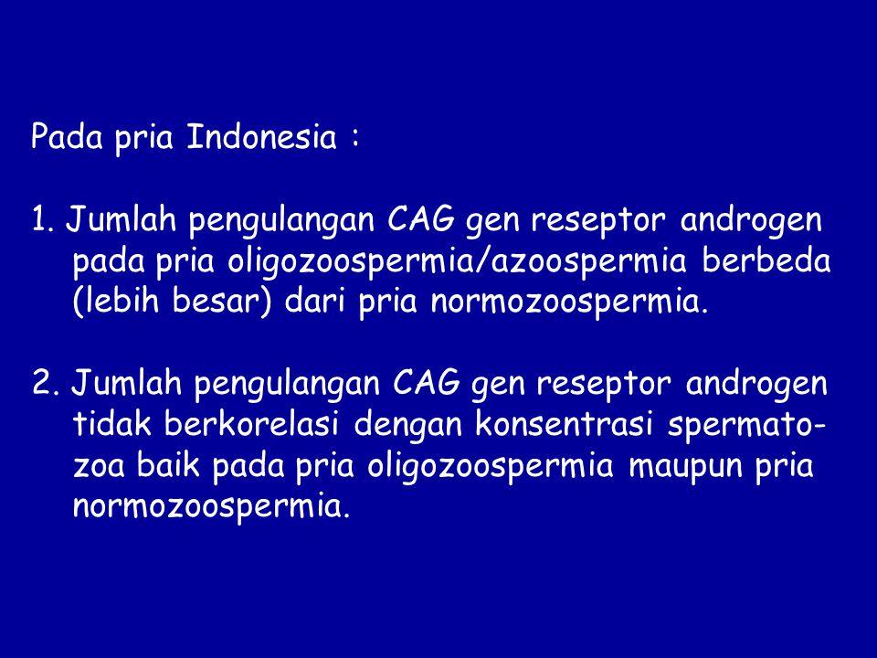 Pada pria Indonesia : 1. Jumlah pengulangan CAG gen reseptor androgen pada pria oligozoospermia/azoospermia berbeda (lebih besar) dari pria normozoosp