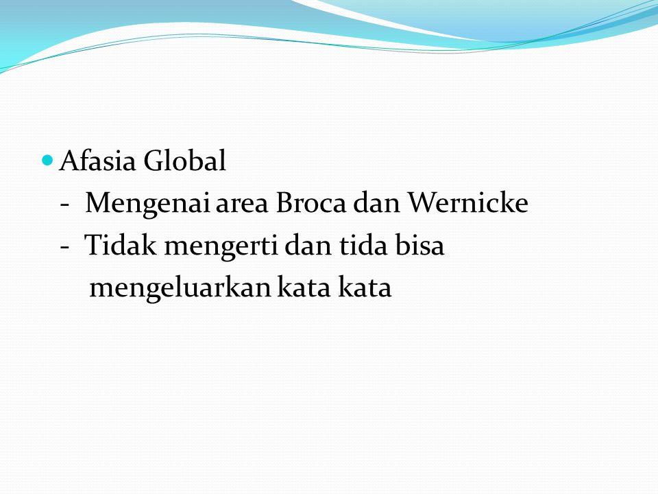 Afasia Global - Mengenai area Broca dan Wernicke - Tidak mengerti dan tida bisa mengeluarkan kata kata