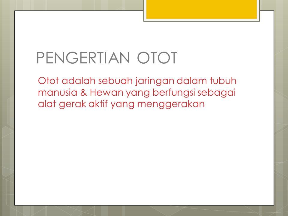 PENGERTIAN OTOT Otot adalah sebuah jaringan dalam tubuh manusia & Hewan yang berfungsi sebagai alat gerak aktif yang menggerakan