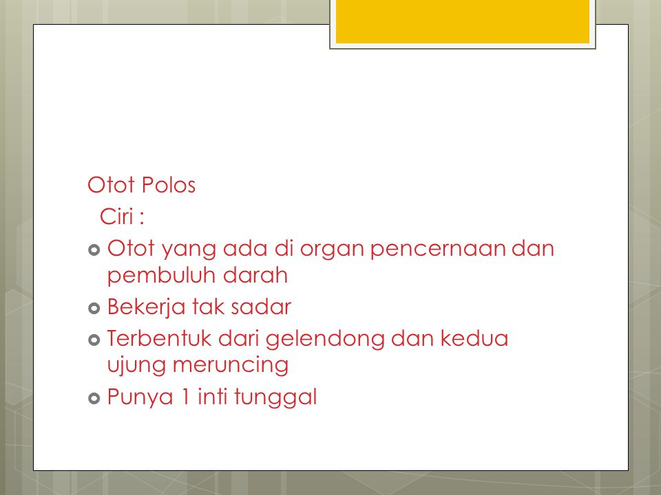 Otot Polos Ciri :  Otot yang ada di organ pencernaan dan pembuluh darah  Bekerja tak sadar  Terbentuk dari gelendong dan kedua ujung meruncing  Pu