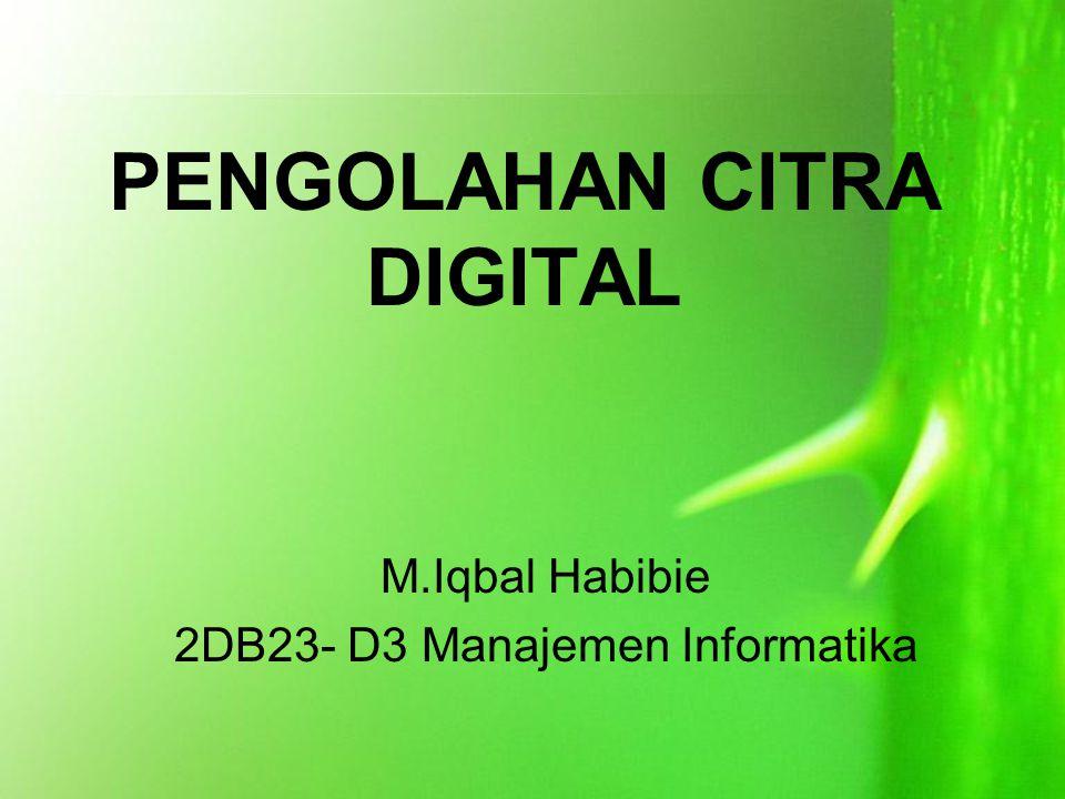 PENGOLAHAN CITRA DIGITAL M.Iqbal Habibie 2DB23- D3 Manajemen Informatika