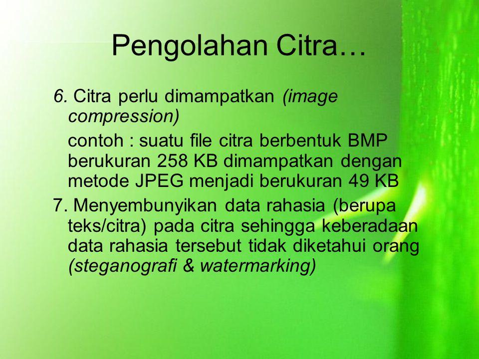 Pengolahan Citra… 6. Citra perlu dimampatkan (image compression) contoh : suatu file citra berbentuk BMP berukuran 258 KB dimampatkan dengan metode JP
