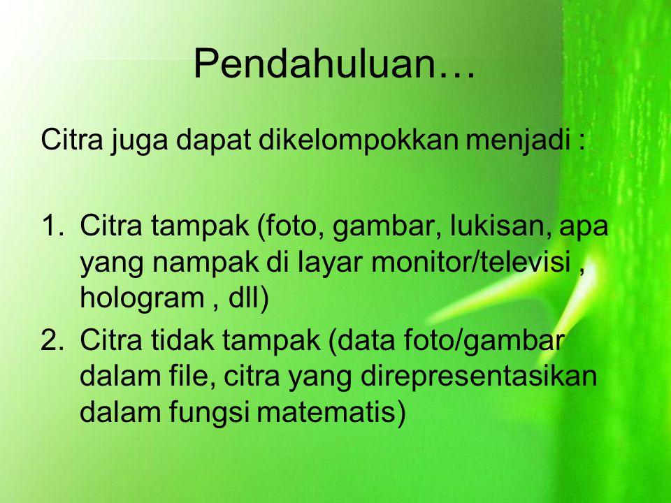 Pendahuluan… Citra juga dapat dikelompokkan menjadi : 1.Citra tampak (foto, gambar, lukisan, apa yang nampak di layar monitor/televisi, hologram, dll)