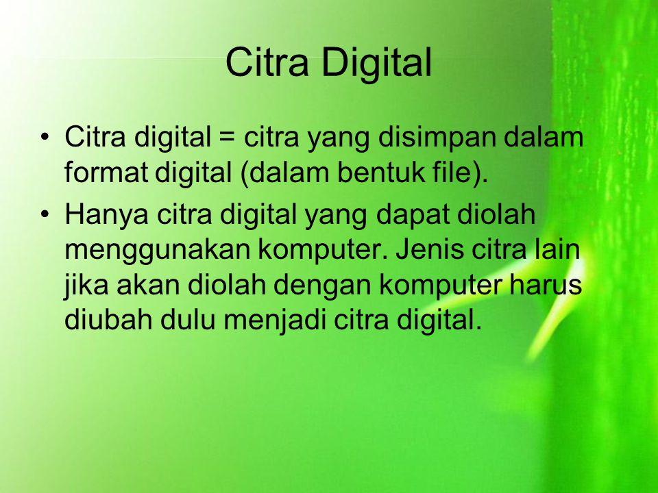 Citra Digital Citra digital = citra yang disimpan dalam format digital (dalam bentuk file). Hanya citra digital yang dapat diolah menggunakan komputer