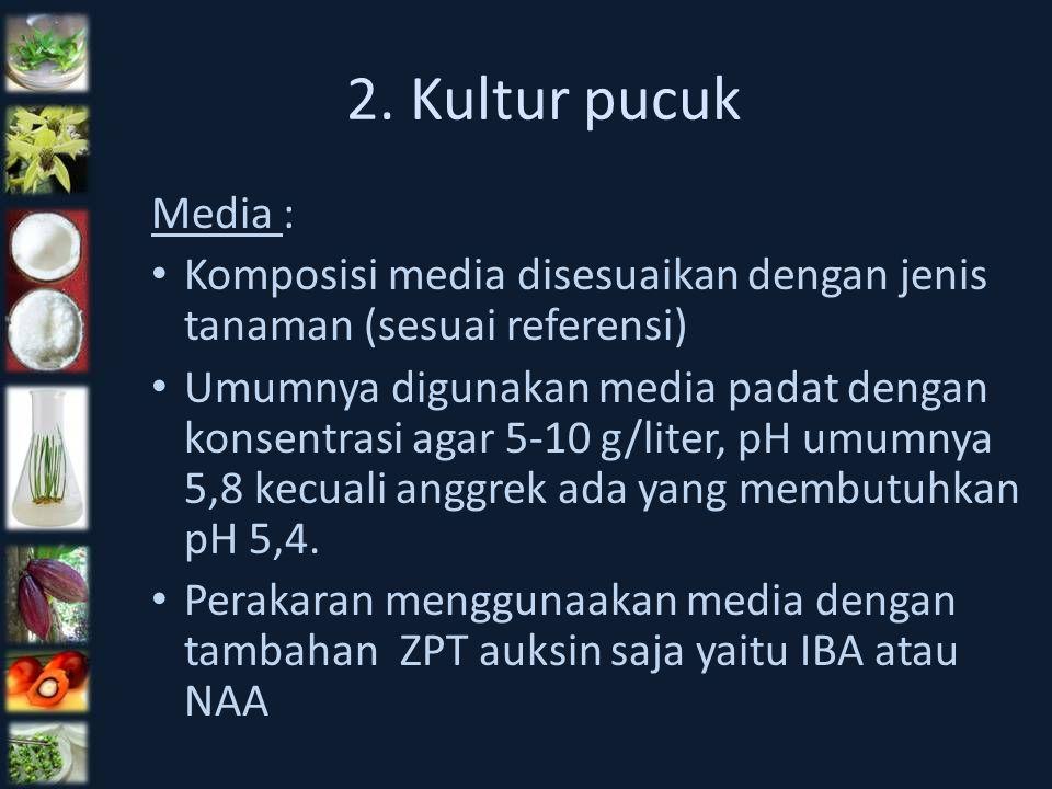 2. Kultur pucuk Media : Komposisi media disesuaikan dengan jenis tanaman (sesuai referensi) Umumnya digunakan media padat dengan konsentrasi agar 5-10