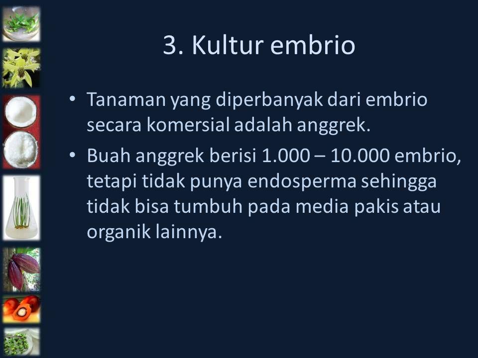 3. Kultur embrio Tanaman yang diperbanyak dari embrio secara komersial adalah anggrek. Buah anggrek berisi 1.000 – 10.000 embrio, tetapi tidak punya e