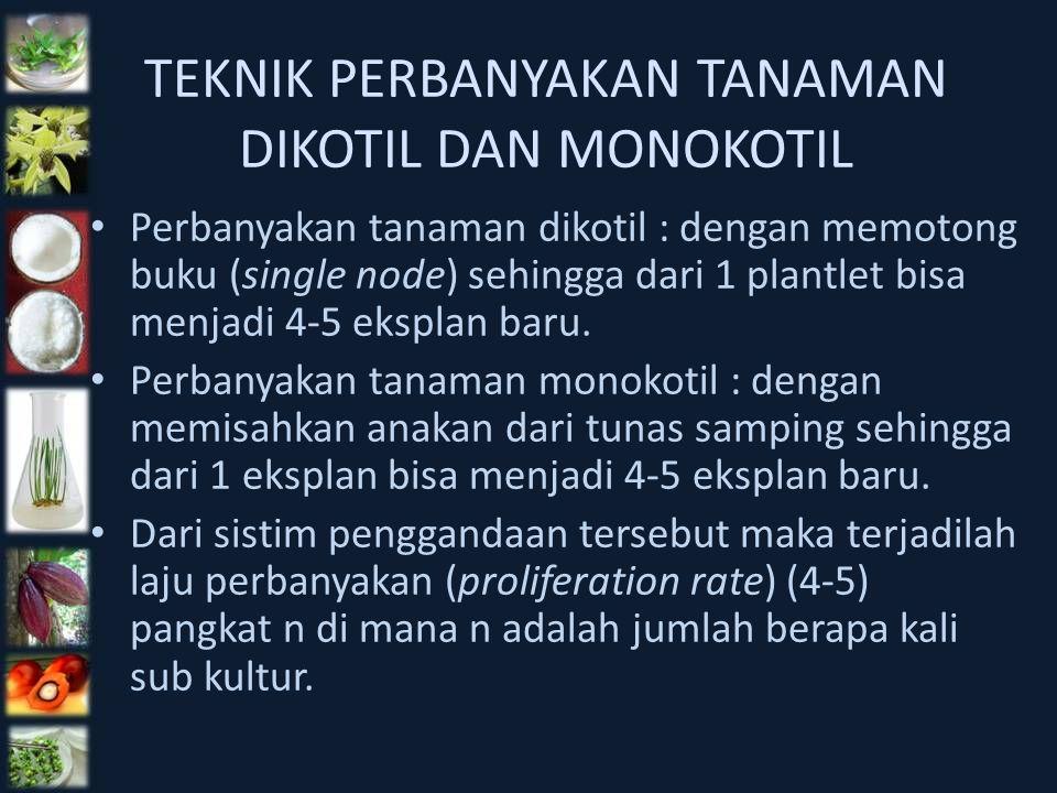 TEKNIK PERBANYAKAN TANAMAN DIKOTIL DAN MONOKOTIL Perbanyakan tanaman dikotil : dengan memotong buku (single node) sehingga dari 1 plantlet bisa menjad