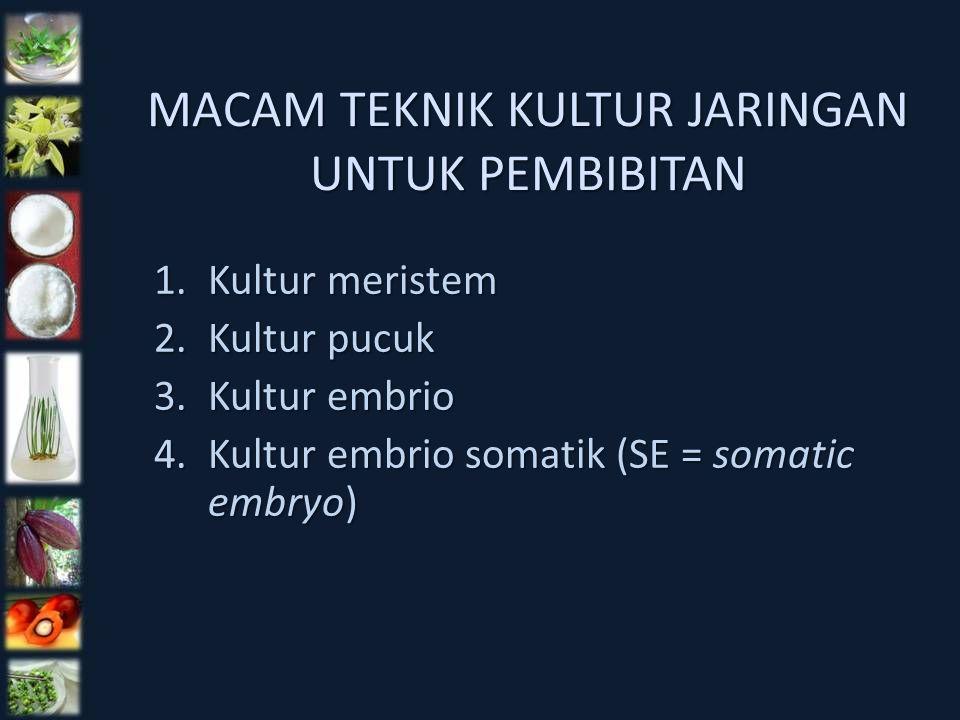 MACAM TEKNIK KULTUR JARINGAN UNTUK PEMBIBITAN 1.Kultur meristem 2.Kultur pucuk 3.Kultur embrio 4.Kultur embrio somatik (SE = somatic embryo)