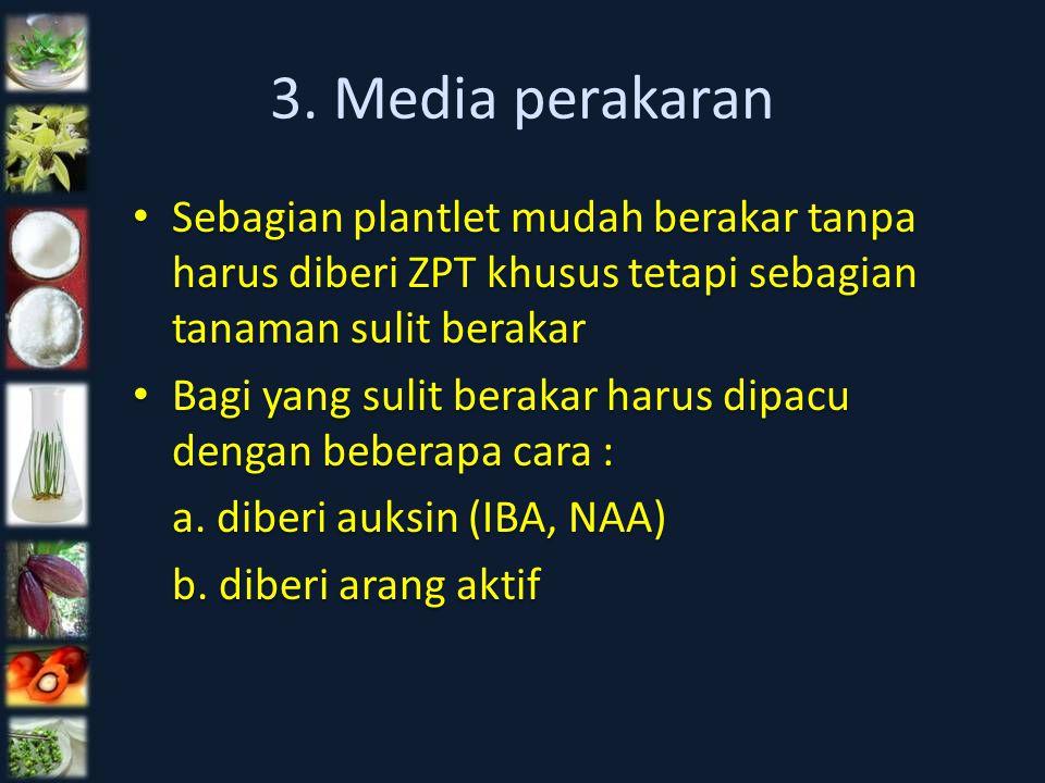 3. Media perakaran Sebagian plantlet mudah berakar tanpa harus diberi ZPT khusus tetapi sebagian tanaman sulit berakar Bagi yang sulit berakar harus d