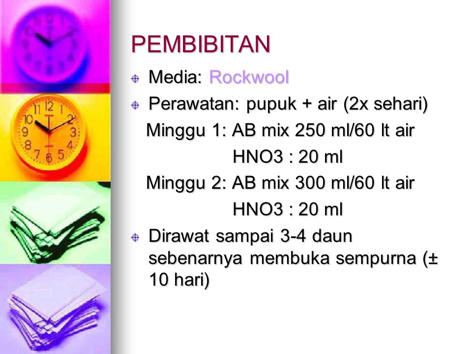 PEMBIBITAN Media: Rockwool Perawatan: pupuk + air (2x sehari) Minggu 1: AB mix 250 ml/60 lt air Minggu 1: AB mix 250 ml/60 lt air HNO3 : 20 ml HNO3 :