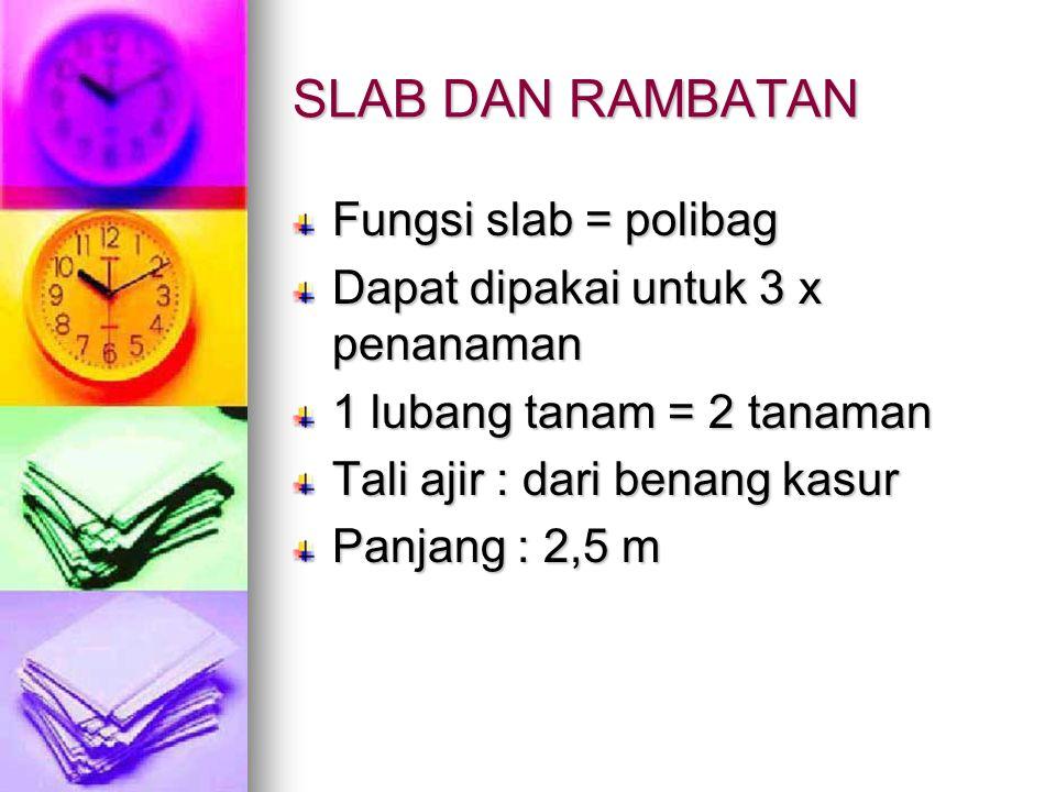SLAB DAN RAMBATAN Fungsi slab = polibag Dapat dipakai untuk 3 x penanaman 1 lubang tanam = 2 tanaman Tali ajir : dari benang kasur Panjang : 2,5 m