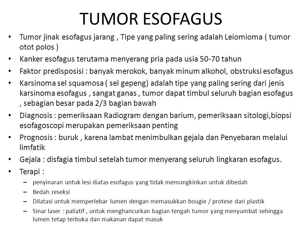 TUMOR ESOFAGUS Tumor jinak esofagus jarang, Tipe yang paling sering adalah Leiomioma ( tumor otot polos ) Kanker esofagus terutama menyerang pria pada