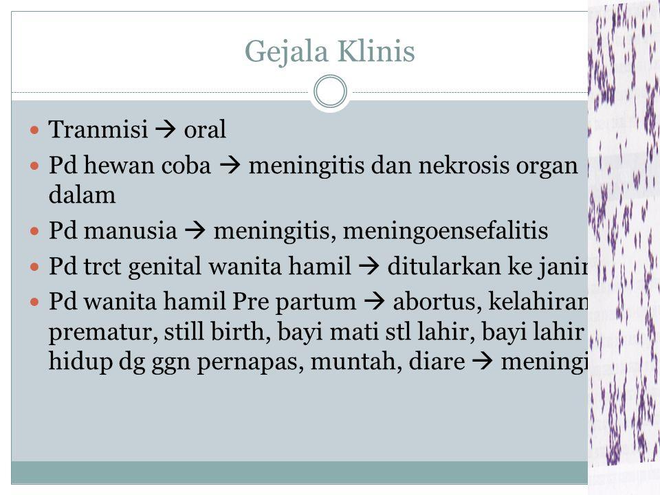 Faktor virulensi Komponen antifagositik ada 2 yaitu: 1. LPS  Mirip endotoksin pd Gram negatif 2. Hemolisin  metabolit yg dikeluarkan bakteri slm pet