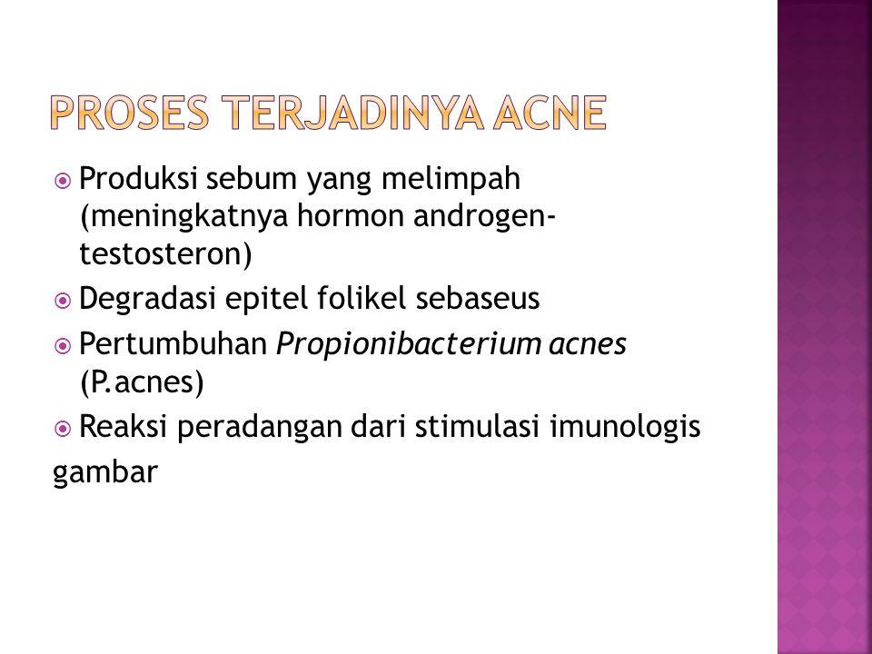 Produksi sebum yang melimpah (meningkatnya hormon androgen- testosteron)  Degradasi epitel folikel sebaseus  Pertumbuhan Propionibacterium acnes (