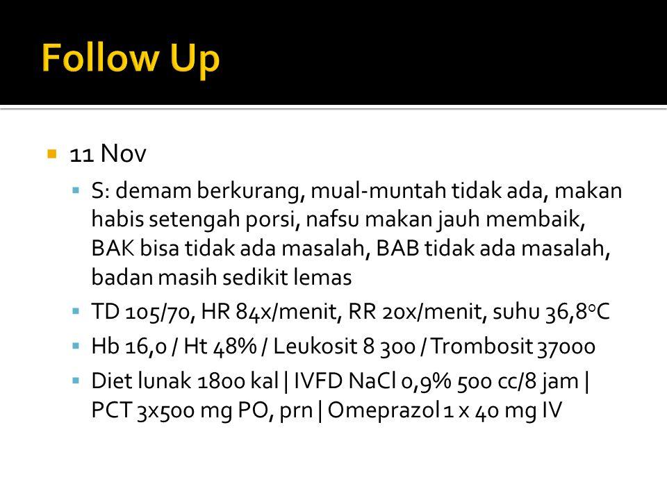  11 Nov  S: demam berkurang, mual-muntah tidak ada, makan habis setengah porsi, nafsu makan jauh membaik, BAK bisa tidak ada masalah, BAB tidak ada