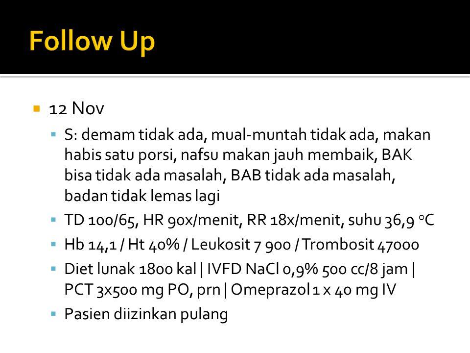  12 Nov  S: demam tidak ada, mual-muntah tidak ada, makan habis satu porsi, nafsu makan jauh membaik, BAK bisa tidak ada masalah, BAB tidak ada masa