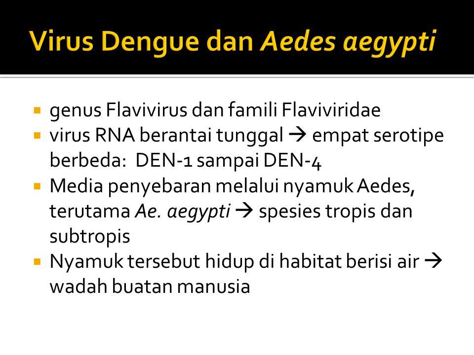  genus Flavivirus dan famili Flaviviridae  virus RNA berantai tunggal  empat serotipe berbeda: DEN-1 sampai DEN-4  Media penyebaran melalui nyamuk