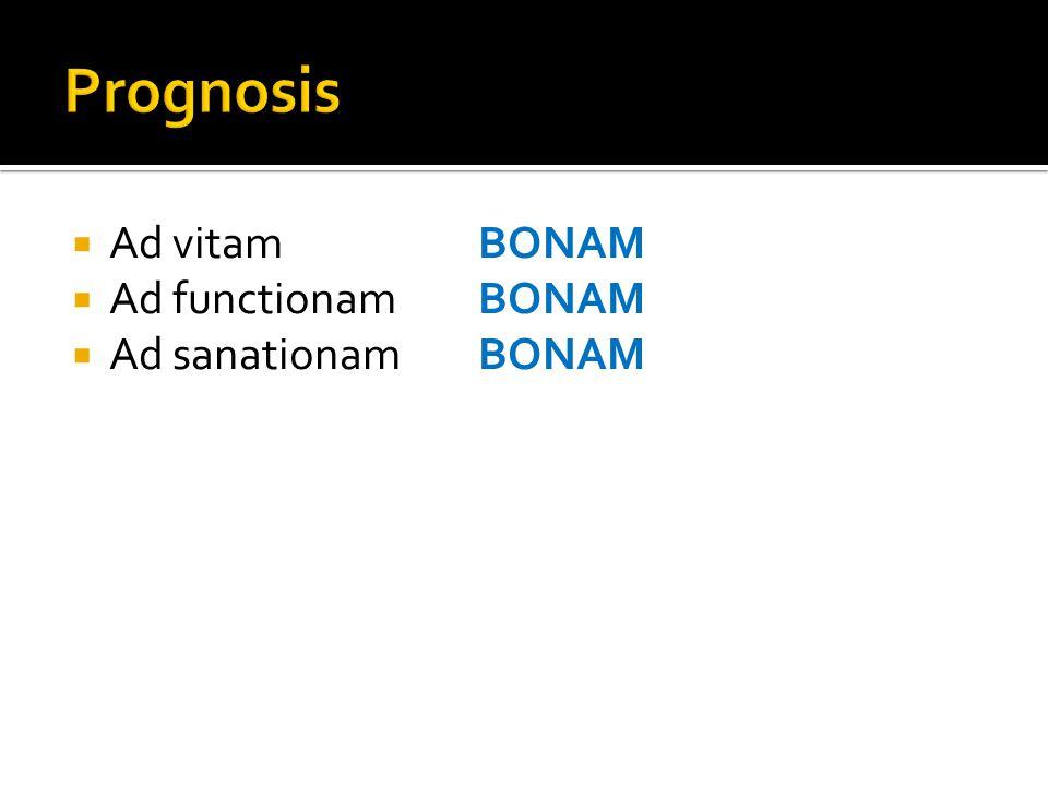  Ad vitamBONAM  Ad functionamBONAM  Ad sanationamBONAM