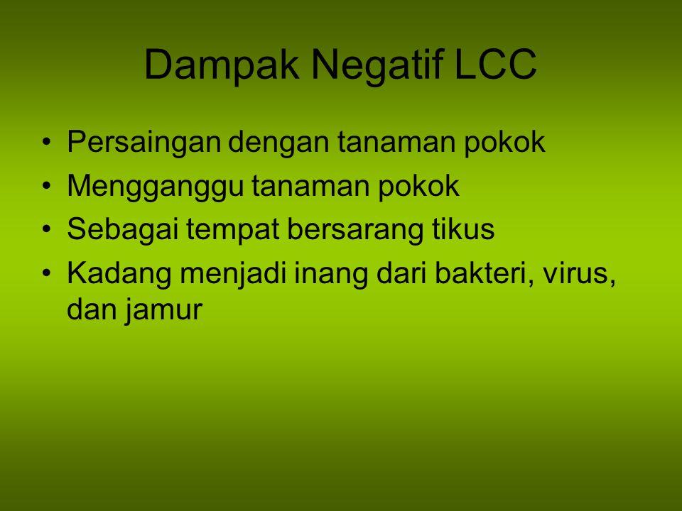 Dampak Negatif LCC Persaingan dengan tanaman pokok Mengganggu tanaman pokok Sebagai tempat bersarang tikus Kadang menjadi inang dari bakteri, virus, d
