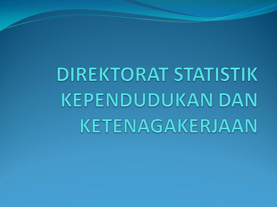 Direktorat Statistik Kependudukan dan Ketenagakerjaan Sub Direktorat Statistik Demografi Sub Direktorat Statistik Ketenagakerjaan Sub Direktorat Statistik Upah dan Pendapatan Sub Diirektorat Statistik Mobilitas Penduduk dan Tenaga Kerja