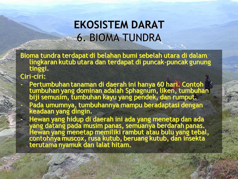 Bioma tundra terdapat di belahan bumi sebelah utara di dalam lingkaran kutub utara dan terdapat di puncak-puncak gunung tinggi. Ciri-ciri: -Pertumbuha