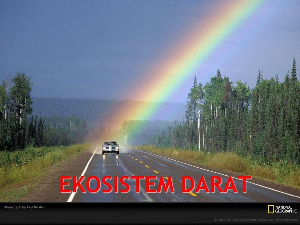 EKOSISTEM DARAT 1.