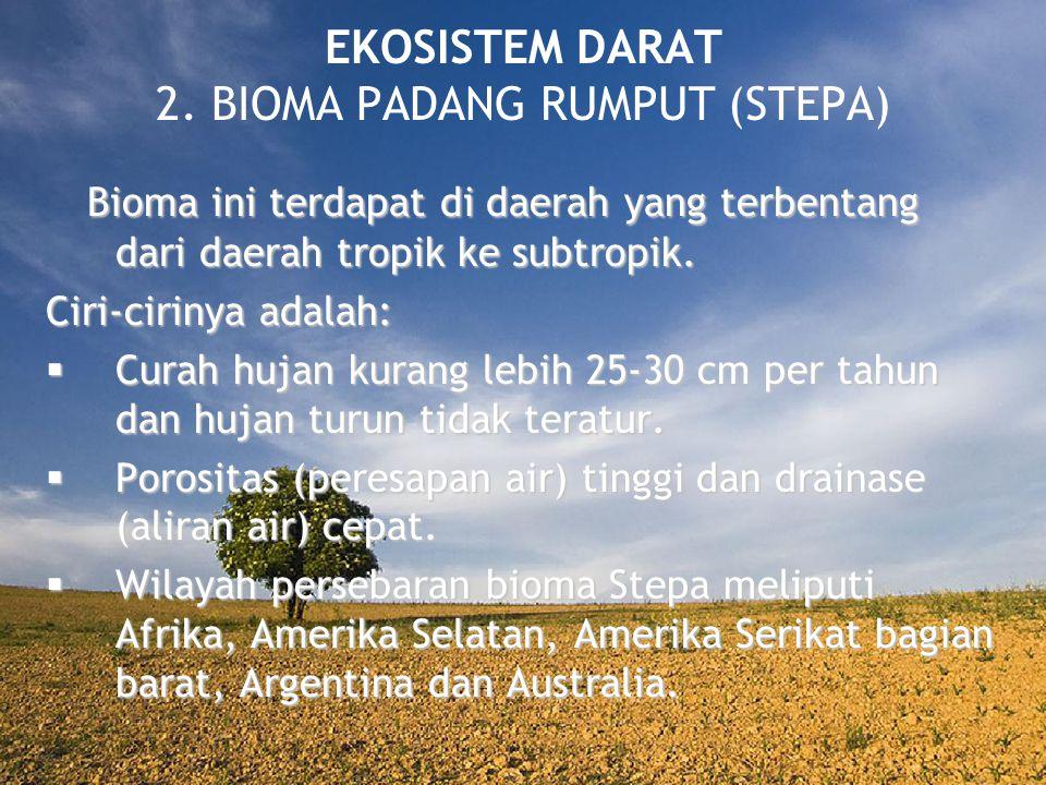 EKOSISTEM DARAT 2. BIOMA PADANG RUMPUT (STEPA) Bioma ini terdapat di daerah yang terbentang dari daerah tropik ke subtropik. Bioma ini terdapat di dae