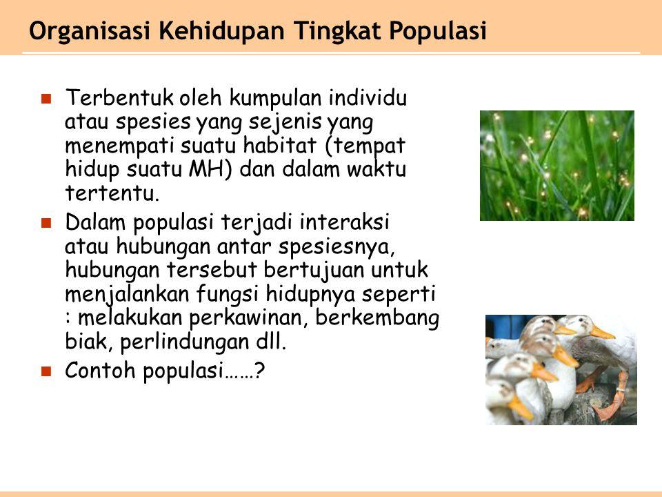Terbentuk oleh kumpulan individu atau spesies yang sejenis yang menempati suatu habitat (tempat hidup suatu MH) dan dalam waktu tertentu. Dalam popula