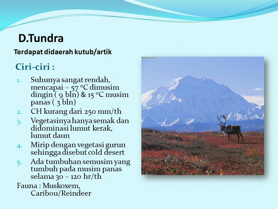 C. Taiga Terdapat di Rusia, Kanada, Alaska Ciri –ciri : 1. Terdapat didaerah artik dan sub artik 2. Suhunya – 12 s.d -10 0 C 3. CH 400 – 750 mm/th 4.