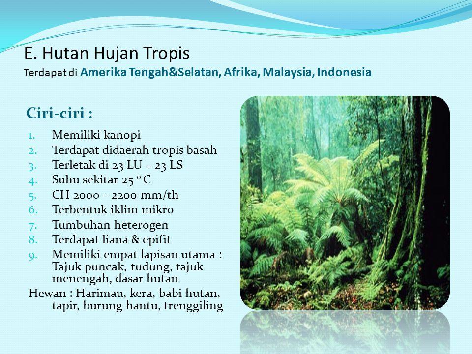 E. Hutan gugur (deciduous) Terdapat didaerah beriklim sedang seperti Cina, Korea, Jepang Ciri-ciri : 1. H rata-rata 750 – 1000 mm/th 2. Jenis tumbuhan