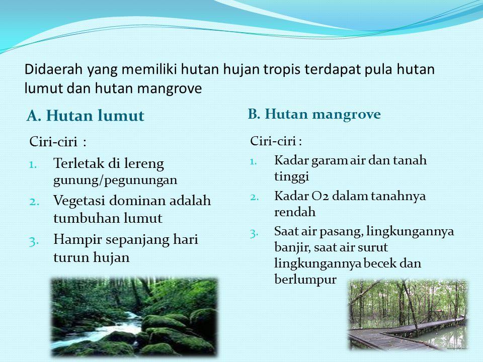 E. Hutan Hujan Tropis Terdapat di Amerika Tengah&Selatan, Afrika, Malaysia, Indonesia Ciri-ciri : 1. Memiliki kanopi 2. Terdapat didaerah tropis basah