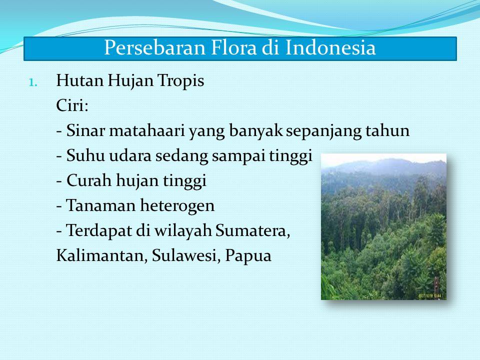 Didaerah yang memiliki hutan hujan tropis terdapat pula hutan lumut dan hutan mangrove A. Hutan lumut B. Hutan mangrove Ciri-ciri : 1. Terletak di ler