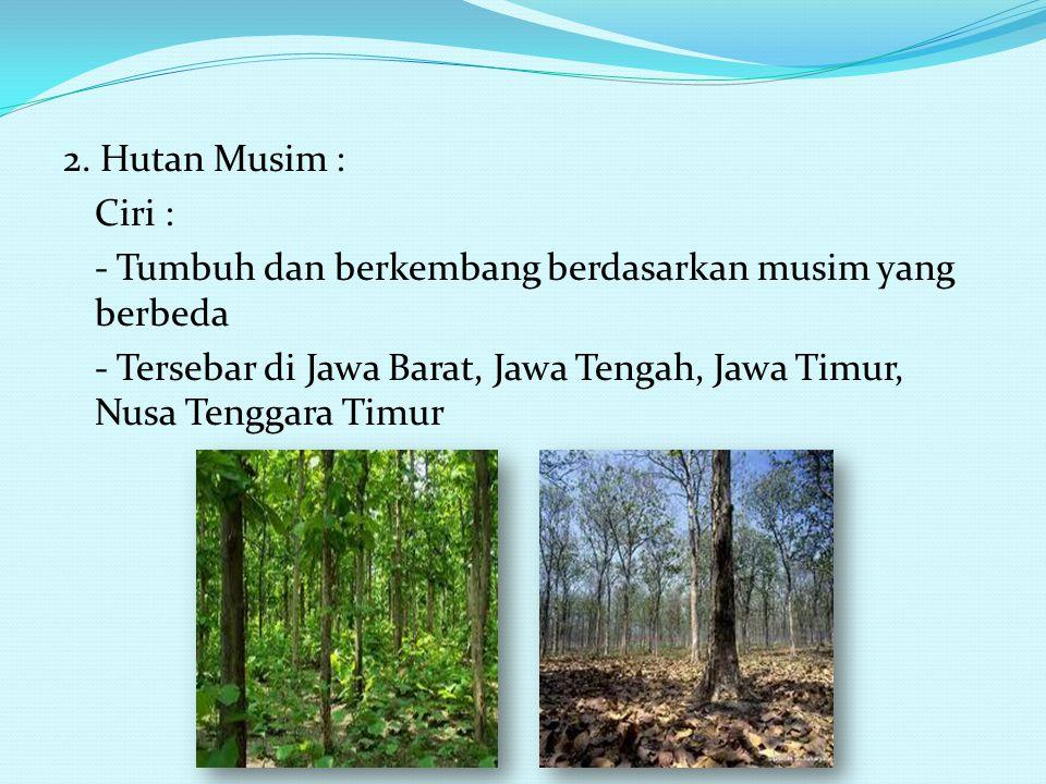 Persebaran Flora di Indonesia 1. Hutan Hujan Tropis Ciri: - Sinar matahaari yang banyak sepanjang tahun - Suhu udara sedang sampai tinggi - Curah huja
