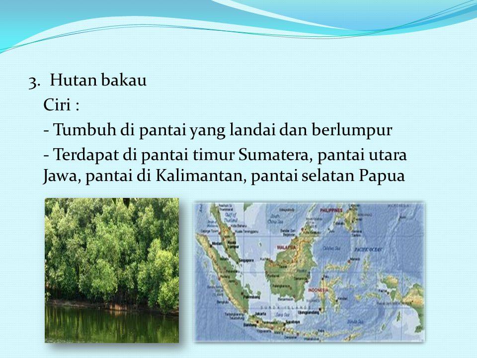 2. Hutan Musim : Ciri : - Tumbuh dan berkembang berdasarkan musim yang berbeda - Tersebar di Jawa Barat, Jawa Tengah, Jawa Timur, Nusa Tenggara Timur