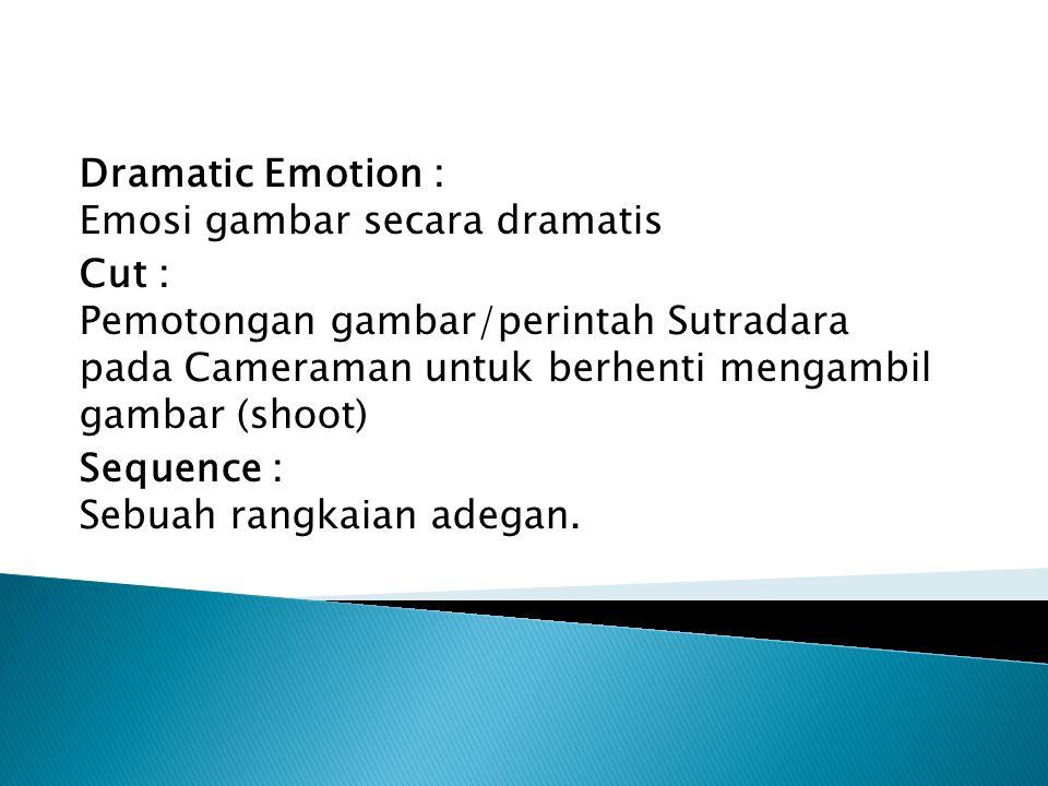 Dramatic Emotion : Emosi gambar secara dramatis Cut : Pemotongan gambar/perintah Sutradara pada Cameraman untuk berhenti mengambil gambar (shoot) Sequence : Sebuah rangkaian adegan.