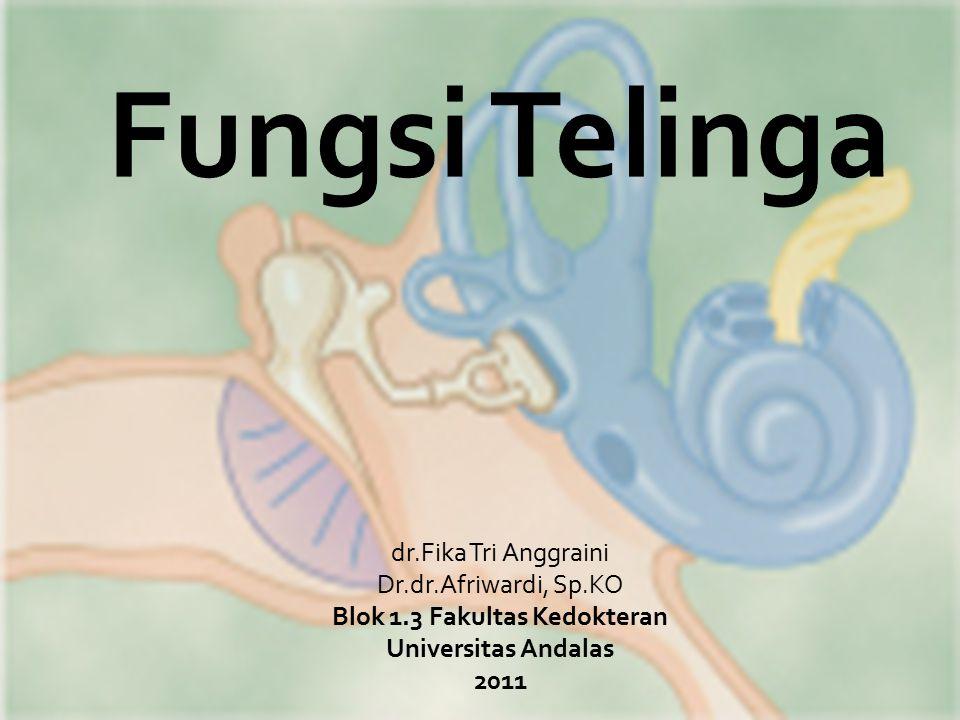 dr.Fika Tri Anggraini Dr.dr.Afriwardi, Sp.KO Blok 1.3 Fakultas Kedokteran Universitas Andalas 2011