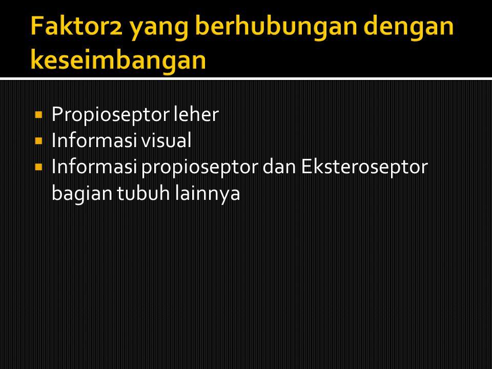  Propioseptor leher  Informasi visual  Informasi propioseptor dan Eksteroseptor bagian tubuh lainnya