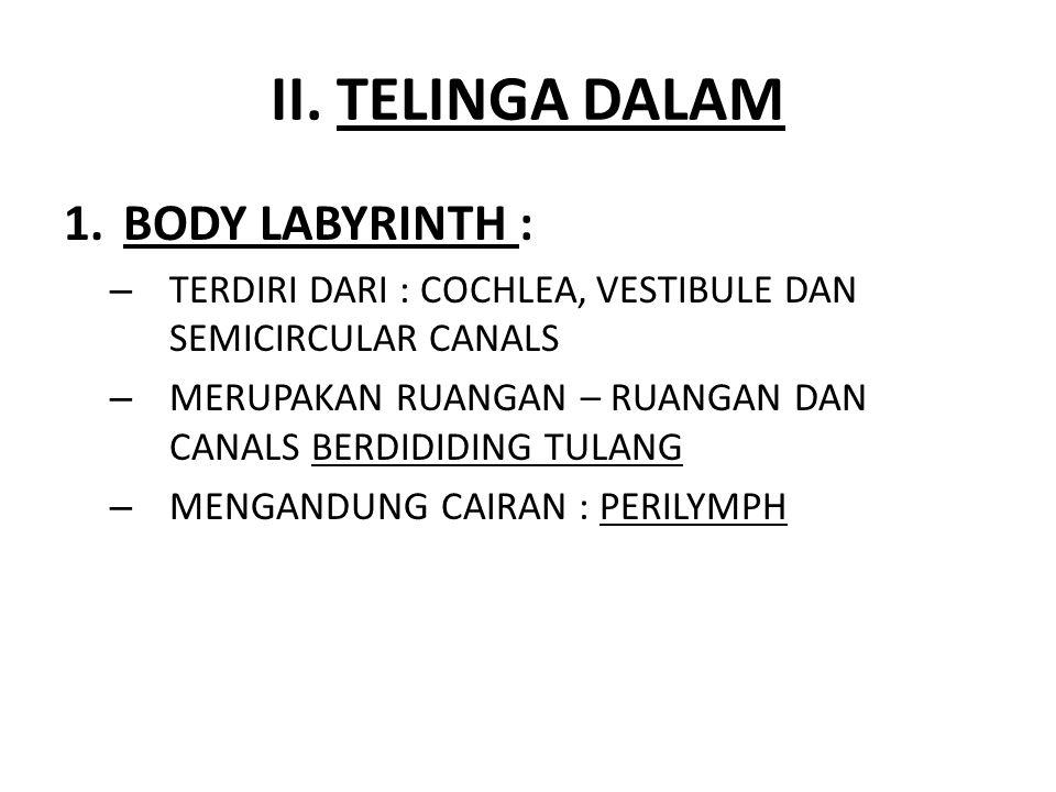II. TELINGA DALAM 1.BODY LABYRINTH : – TERDIRI DARI : COCHLEA, VESTIBULE DAN SEMICIRCULAR CANALS – MERUPAKAN RUANGAN – RUANGAN DAN CANALS BERDIDIDING