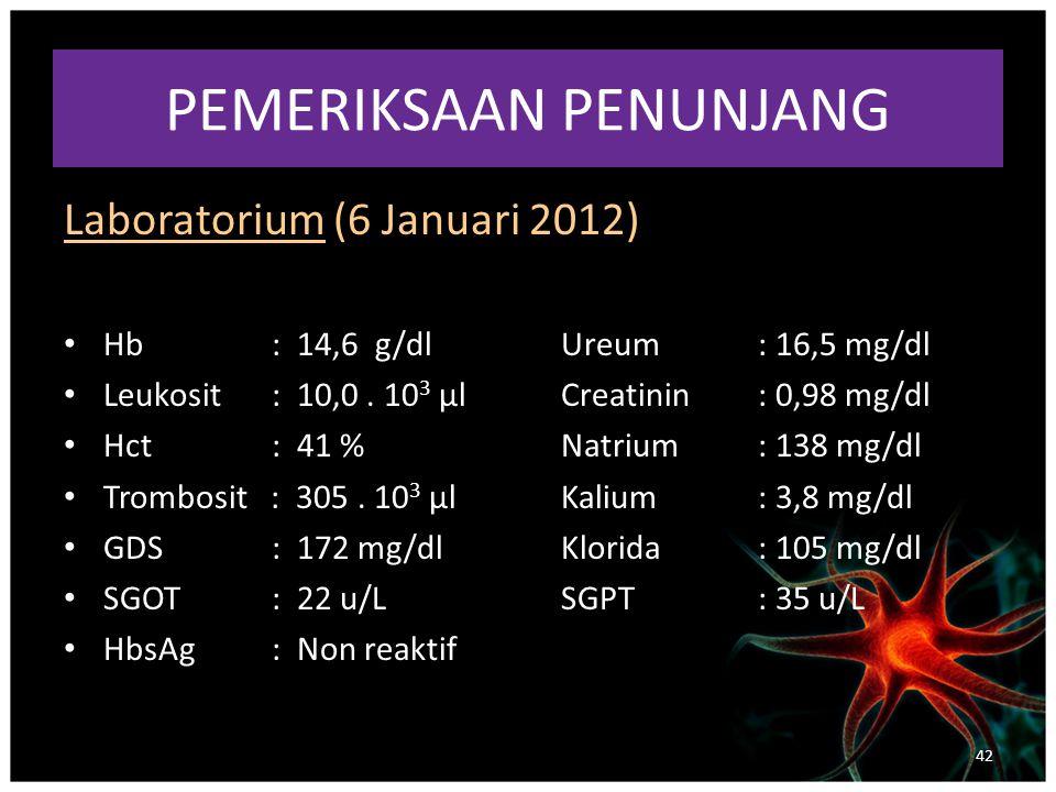PEMERIKSAAN PENUNJANG Laboratorium (6 Januari 2012) Hb: 14,6 g/dlUreum : 16,5 mg/dl Leukosit: 10,0.