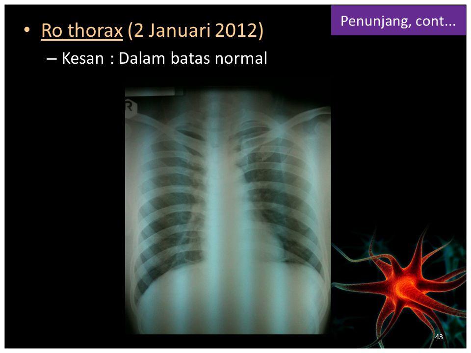 Ro thorax (2 Januari 2012) – Kesan : Dalam batas normal Penunjang, cont... 43