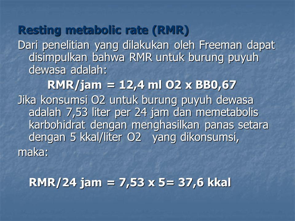Resting metabolic rate (RMR) Dari penelitian yang dilakukan oleh Freeman dapat disimpulkan bahwa RMR untuk burung puyuh dewasa adalah: RMR/jam = 12,4