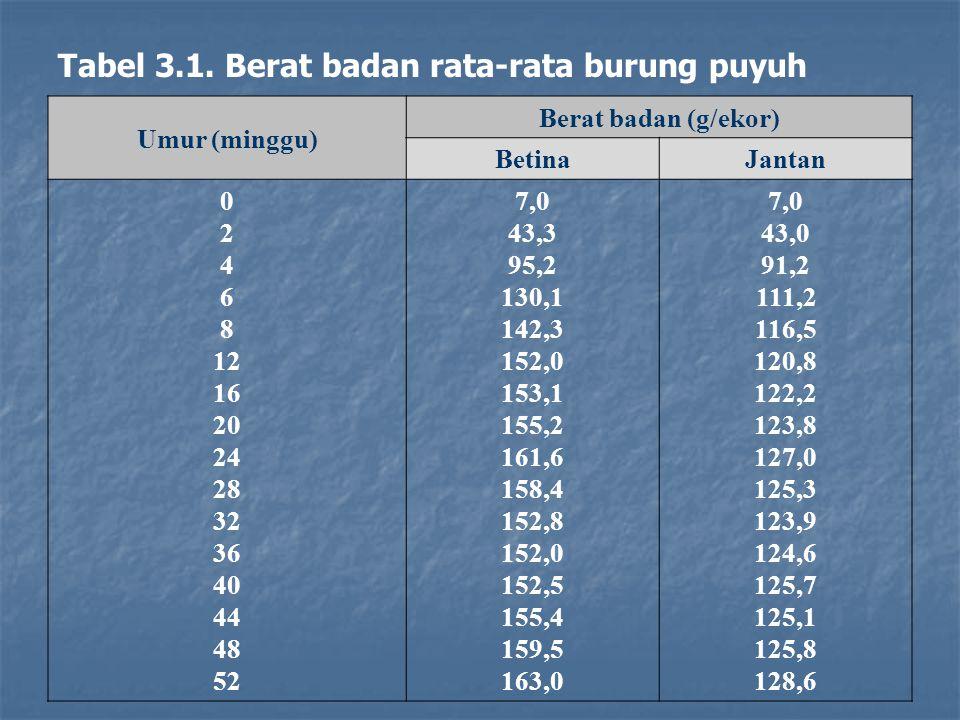 Umur (minggu) Berat badan (g/ekor) BetinaJantan 0 2 4 6 8 12 16 20 24 28 32 36 40 44 48 52 7,0 43,3 95,2 130,1 142,3 152,0 153,1 155,2 161,6 158,4 152