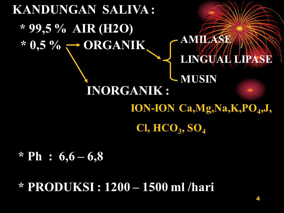 4 KANDUNGAN SALIVA : * 99,5 % AIR (H2O) * 0,5 % ORGANIK INORGANIK : AMILASE LINGUAL LIPASE MUSIN ION-ION Ca,Mg,Na,K,PO 4,J, Cl, HCO 3, SO 4 * Ph : 6,6