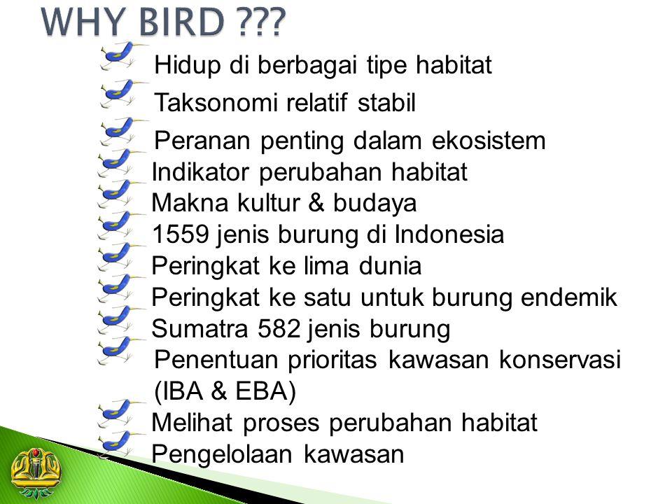 Hidup di berbagai tipe habitat Taksonomi relatif stabil Peranan penting dalam ekosistem Indikator perubahan habitat Makna kultur & budaya 1559 jenis b