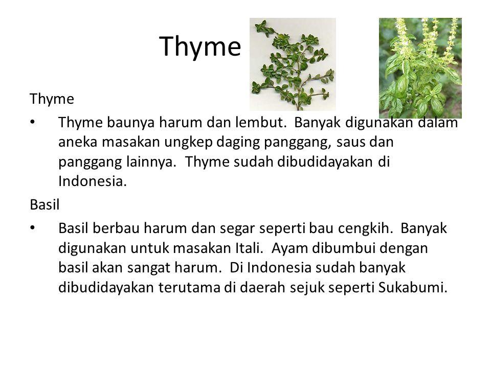 Thyme & Basil Thyme Thyme baunya harum dan lembut. Banyak digunakan dalam aneka masakan ungkep daging panggang, saus dan panggang lainnya. Thyme sudah