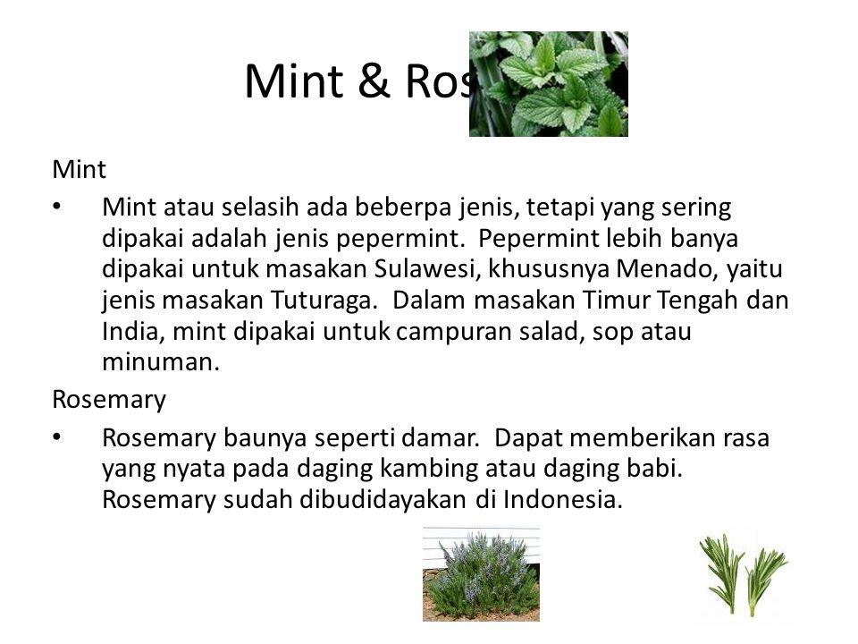 Mint & Rosemary Mint Mint atau selasih ada beberpa jenis, tetapi yang sering dipakai adalah jenis pepermint. Pepermint lebih banya dipakai untuk masak