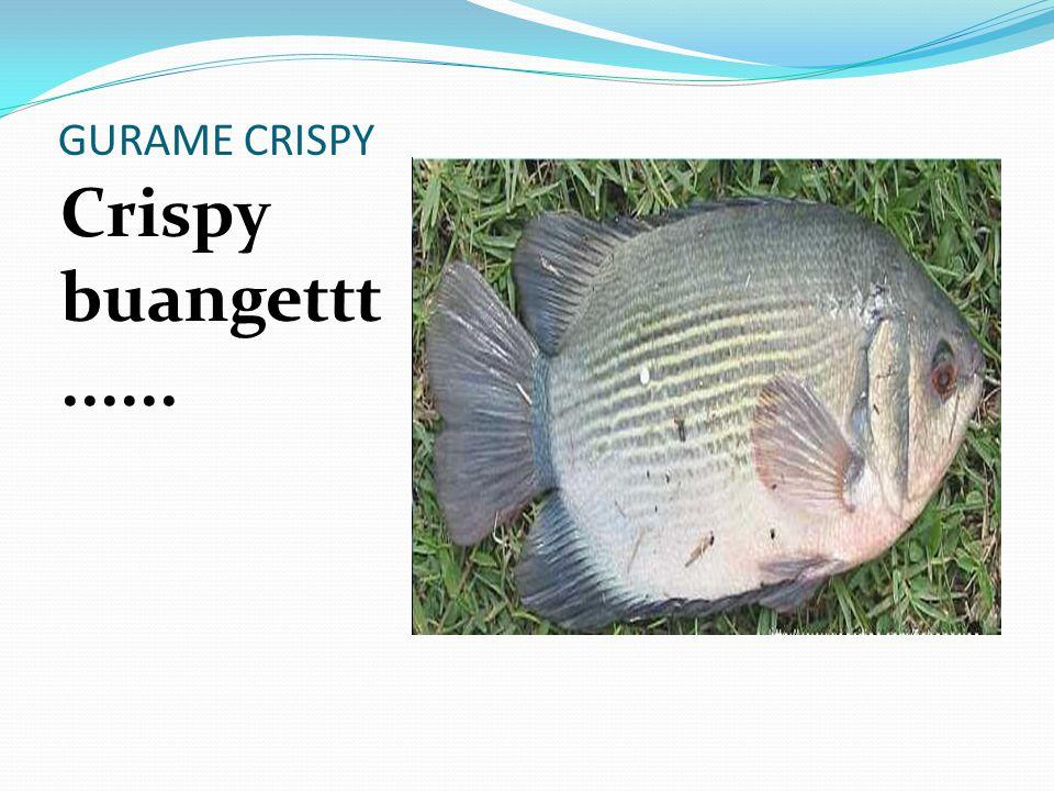 GURAME CRISPY Crispy buangettt......